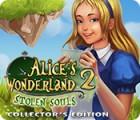 لعبة  Alice's Wonderland 2: Stolen Souls Collector's Edition