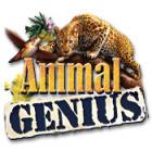 لعبة  Animal Genius