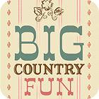 لعبة  Big Country Fun