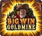 لعبة  Big Win Goldmine
