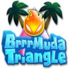 لعبة  Brrrmuda Triangle