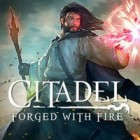 لعبة  Citadel: Forged with Fire