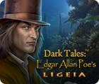 لعبة  Dark Tales: Edgar Allan Poe's Ligeia