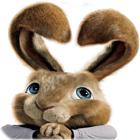 لعبة  Hop: Easter Bunny Coloring